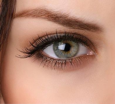 how to properly apply eyeshadow  amazingmakeups
